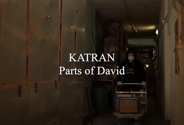 Parts of David, 2020